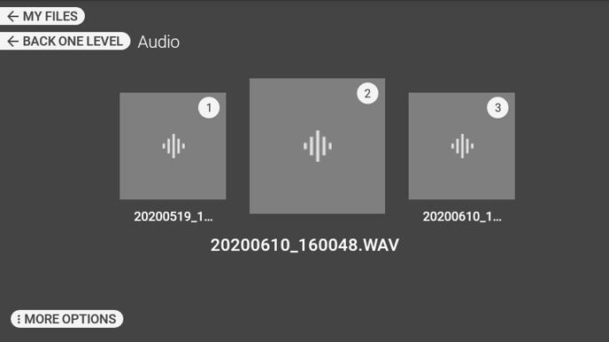 RealWear_Software_HMT_R11.1_Audio-Recorder_13